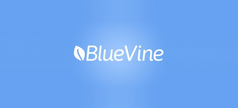BlueVine Business Loan Review